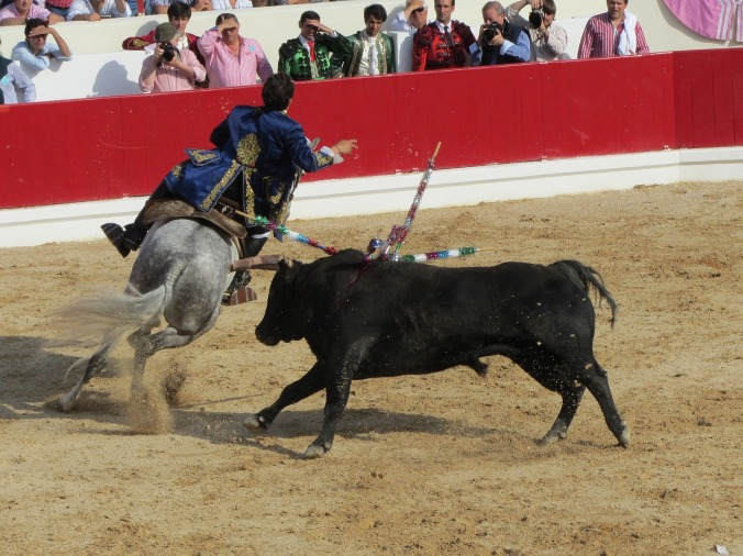 bull-fighting-1080924_1920